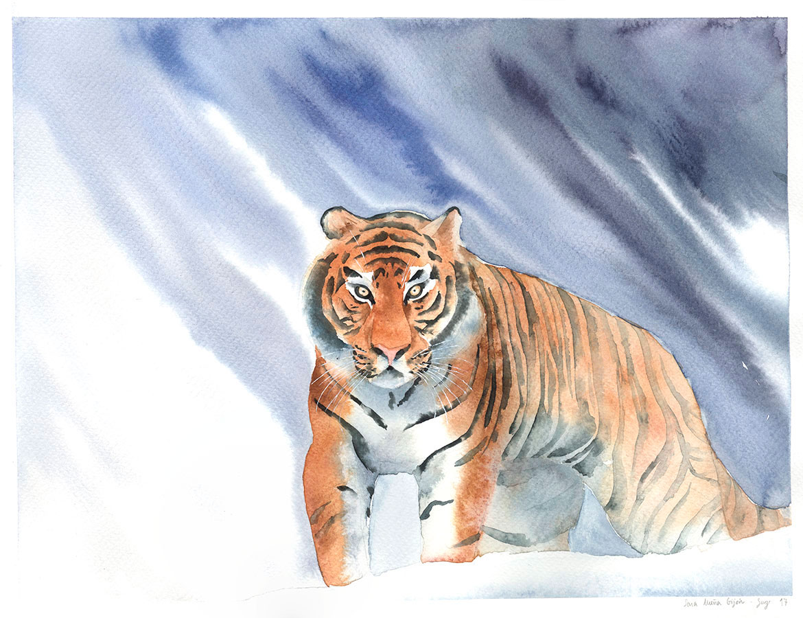 Tiger Watercolor